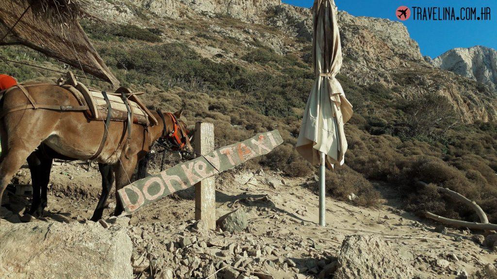 Donkey taxi na plazi balos grcka