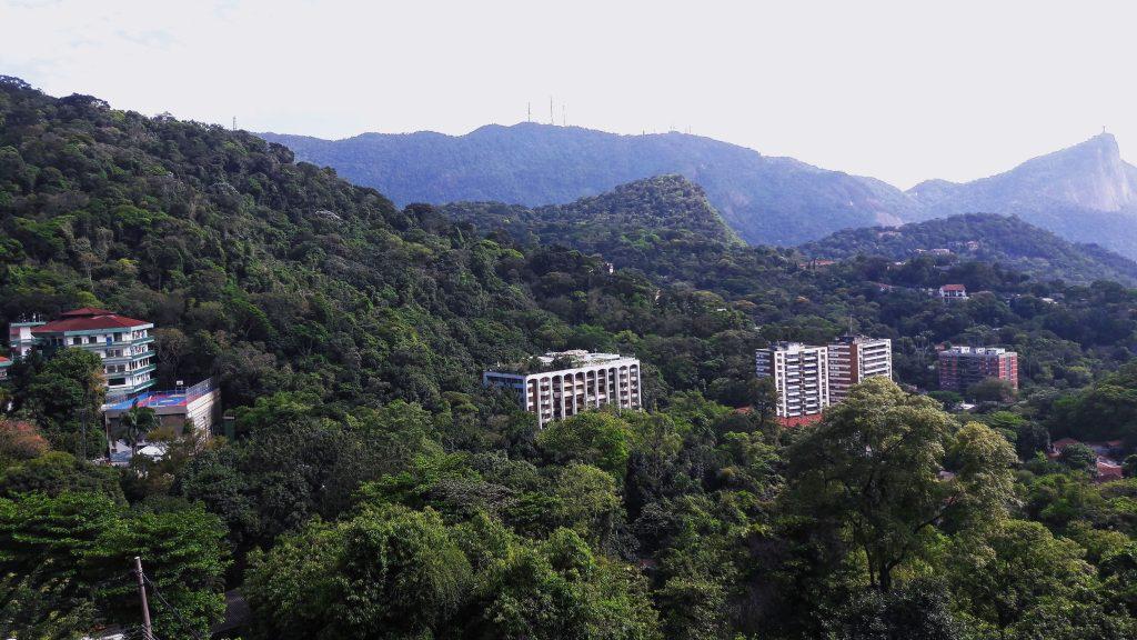 Tijuca - handmade prašuma usred grada