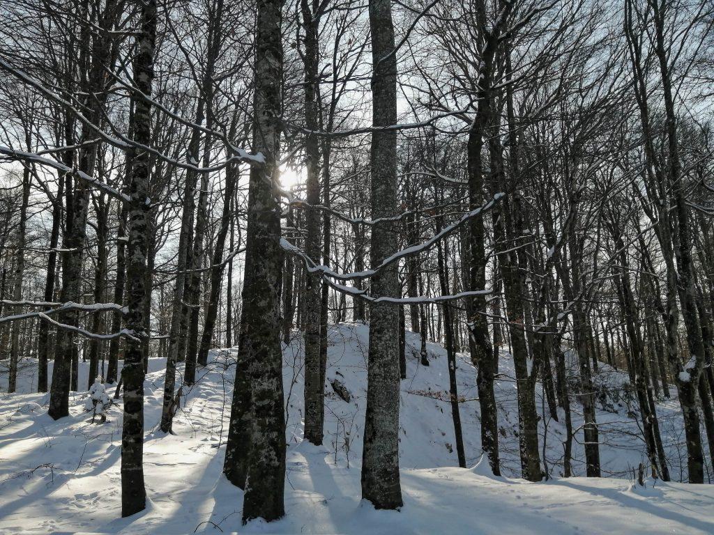 plitvicka jezera izlet plitvice zimski vikend na plitvicama
